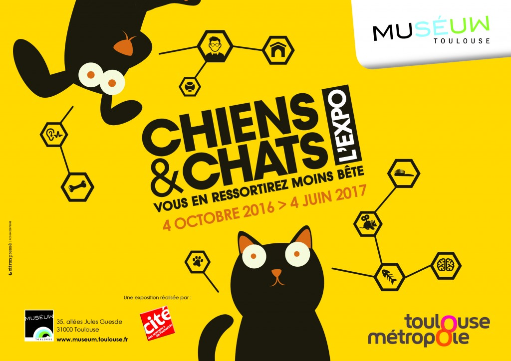 a3-paysage-chiens-chats